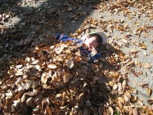 葉っぱのお布団のできあがりだね!